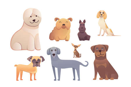 pit: Group of purebred dogs. Illustration for dog training courses, breed club landing page and corporate site design
