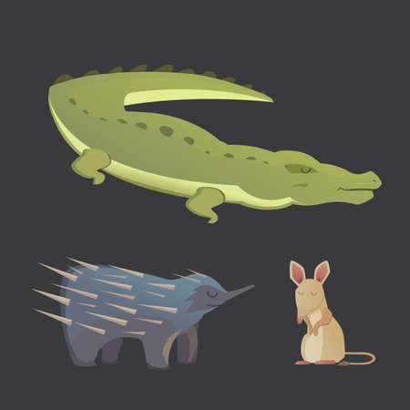 australian animals: Australian animals vector crocodile, echidna and opossum isolated
