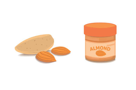 nutshell: Vector collection of cartoon isolated almond. helthy nuts vegeterian food flat
