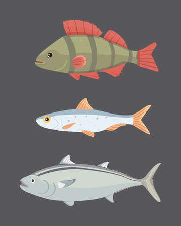 shark catfish: Isolated river fish. Set of freshwater sea cartoon fishes. Fauna ocean illustration