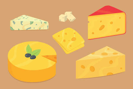 Cheese types . Modern flat style realistic vector illustration icons. Isolated parmesan or cheddar fresh on white background.