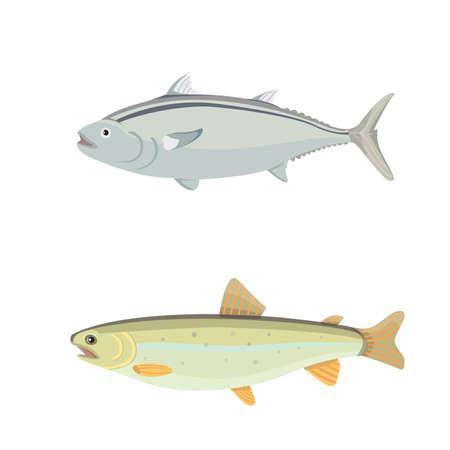 Isolated river fish. Set of freshwater sea cartoon fishes. Fauna ocean vector illustration Illustration