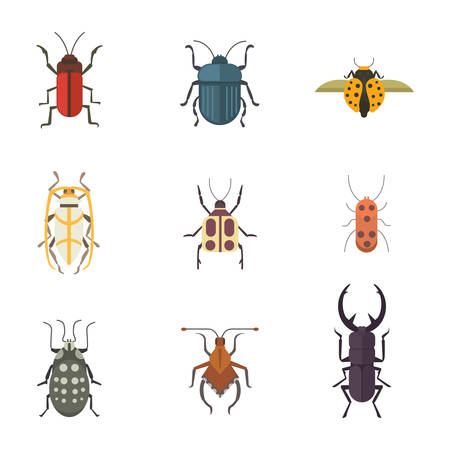 Set of insects flat style design icons. Collection nature beetle and zoology cartoon illustration