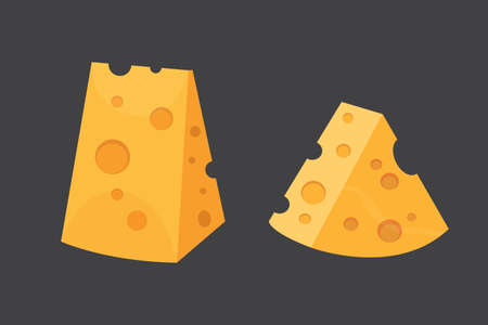Cheese types Modern flat style realistic vector illustration icons.