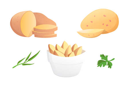 Set Potatoes vector illustration. Isolated potato on white