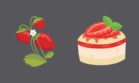 Strawberry and cake isolated vector illustration set
