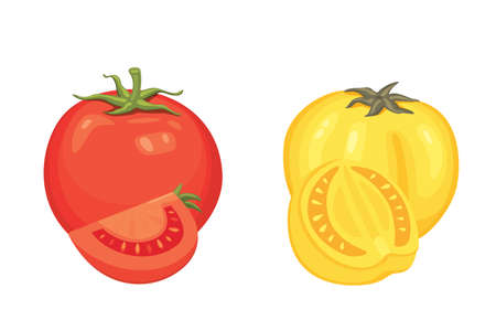 Collection of fresh red tomatoes and soup vector illustrations. Half, slice, cherry tomato