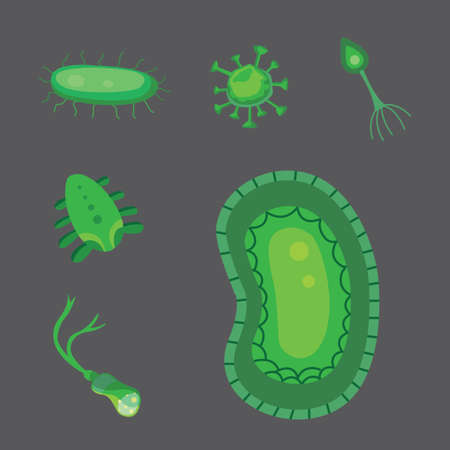 bacteria cell: vector set bacteria and virus flat illustration