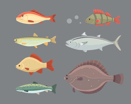 seawater: Isolated river fish. Set of freshwater sea cartoon fishes. Fauna ocean vector illustration.
