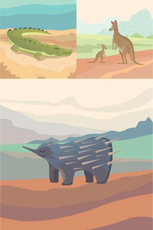 Australian animals vector crocodile, kangaroo and echidna flat style .