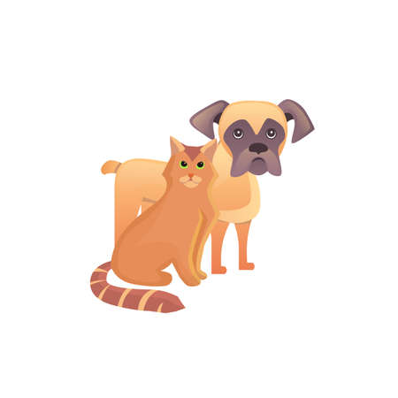 wite: Cute home pets. Cartoon cat and dog. Best friends illustration on wite