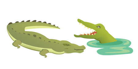 Crocodile Cute Character set. Aligator vector cartoon isolated illustration
