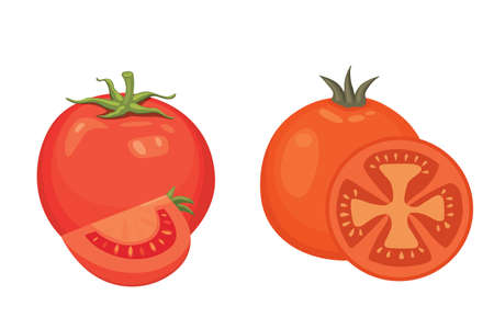 Collection of fresh red tomatoes and soup illustrations.