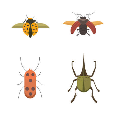 computer art: Set of insects flat style vector design icons. Collection nature beetle and zoology cartoon illustration. Bug icon wildlife concept Illustration