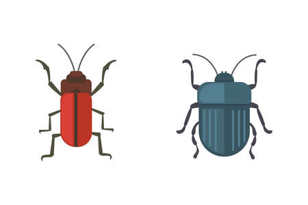 insects flat style vector design icons. Collection nature beetle and zoology cartoon illustration. Bug icon wildlife concept.
