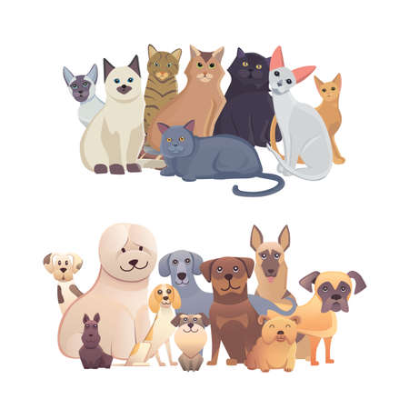 cats and dogs border set, front view. Pets collection of cartoon illustrations. Illustration
