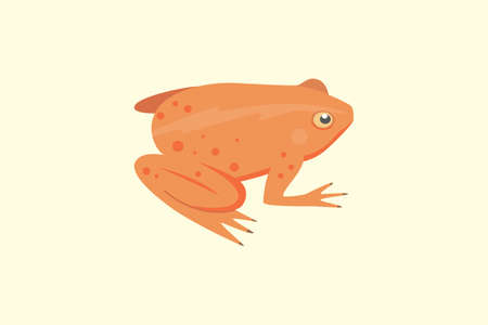 colored bottle: Frog Cartoon Vector Illustration isolated. tropical animal Illustration