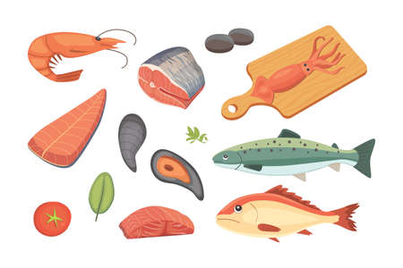 Vector Seafood illustrations set flat fresh fish and crab. Lobster and oyster, shrimp and menu, octopus animal, shellfish lemon. Illustration