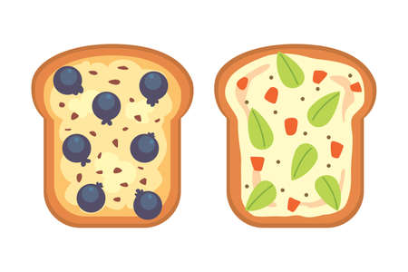 Set toasts and sandwich breakfast. Bread toast with jam, egg, cheese, blueberry, peanut butter, salami, fish. Flat vector illustration