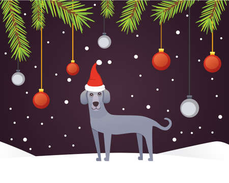 Christmas banner template with dog, balls, ribbons and decoration. New year tree branches background.