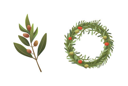 Set olives fruit with an olive branch and rosemary wreath vector illustration in cartoon style.
