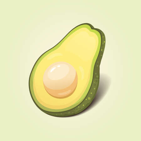 Realistic fresh avocado fruit. Vector illustration in cartoon style.