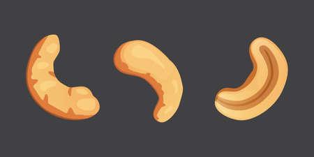 Set cashew nut vector illustration in cartoon style. Organic food