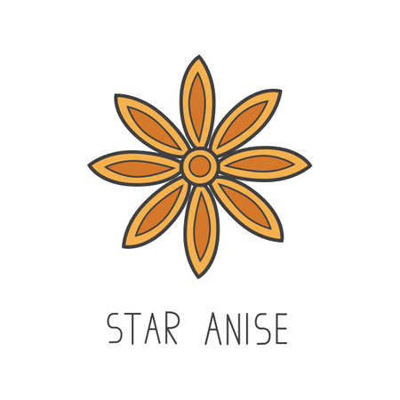 star anise line vector illustration, cooking isolated icon.