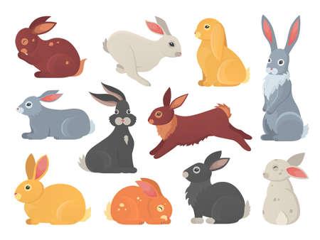 Insieme di vettore dei conigli carini in stile cartone animato. Siluetta dell'animale domestico del coniglietto in diverse pose. Collezione di animali colorati di lepre e coniglio