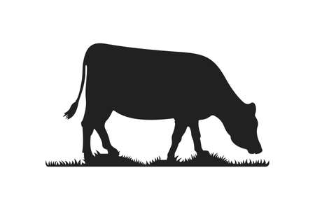 Cow silhouettes on grass. Cow grazing on meadow vector cartoon illustration.