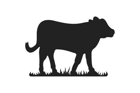 Calf silhouettes on grass. Cow grazing on meadow vector cartoon illustration.