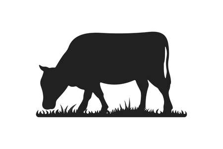Cow silhouettes on grass. Cow grazing on meadow vector cartoon illustration. Çizim