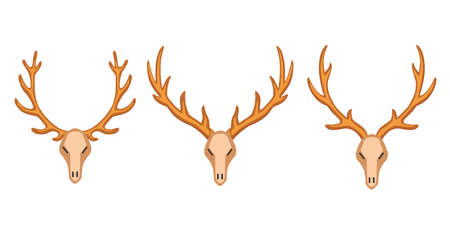 Different vector horns, horny hunting trophy illustration in cartoon style
