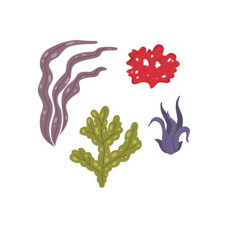Vector seaweed icons isolated on white. Sea coral and underwater marine plants.