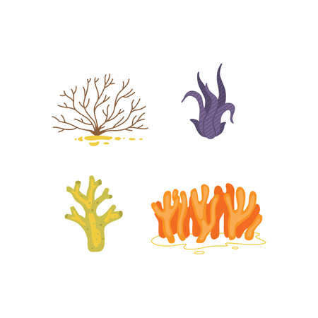 Vector seaweed icons isolated on whire. Sea coral and underwater marine plants.