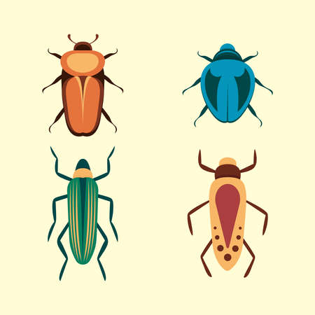 Bugs vector icons for web design isolated on white background. Bug and Insect set in cartoon style.