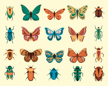 Vector illustration of cartoon butterflies and bugs isolated on white background. Abstract butterflies, colorful flying insect. Ilustração