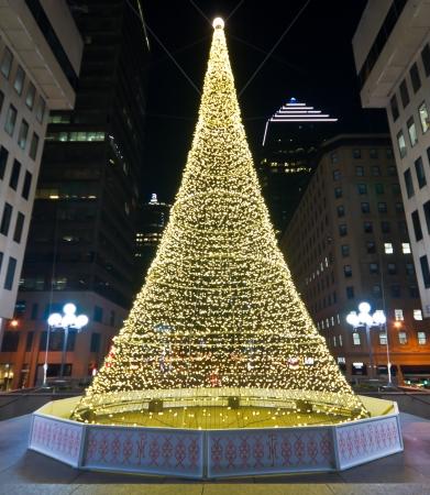 Illuminated Christmas tree in Montreal  ( Night Scene ) Standard-Bild