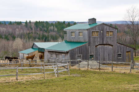 Horse barn with three horses on the outside thereof