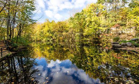 Paisagem do outono com �rvores reflexo no lago