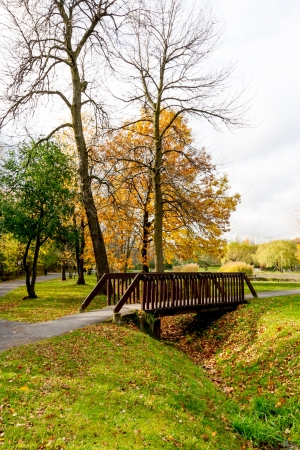 Small Footbridge over a moat filled with leaves in a park in autumn Stock Photo