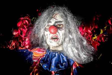 bizarre: Dummy Clown scary Face, partially isolated