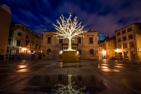 Tree Surrounded by decorative lights for Christmas among buildings of Old Montreal and part of the reflection of the tree in the water in the foreground at night  Stock Photo