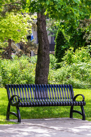 Park bench in black metal, with trees, leaves, flag, and grass