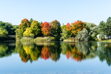 Reflection of trees in water in an autumn landscape