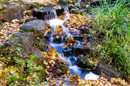 Little Natural Waterfalls in Autumn in a park of Montreal