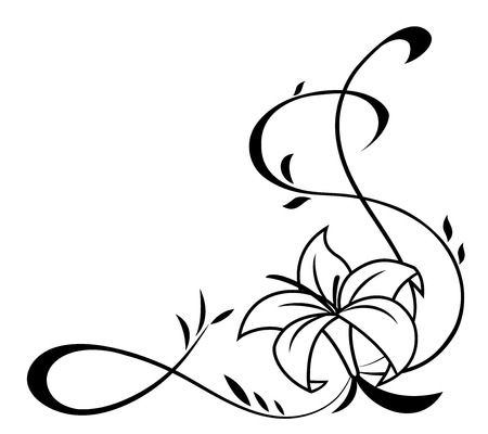 Illustration of the lily flowers black silhouette on white background