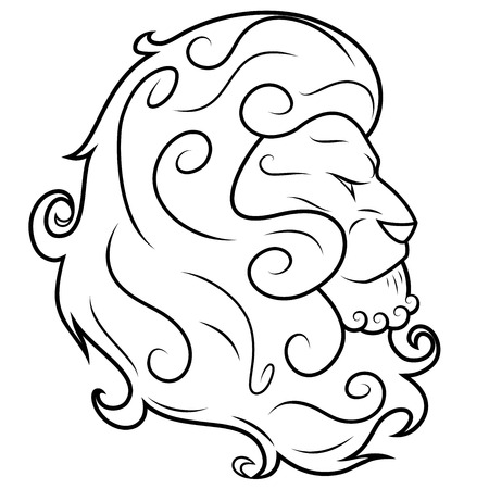 head of lion: Illustration of the lion head on white background