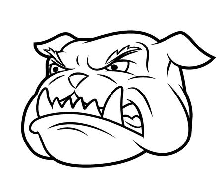 Illustration of the furious aggressive bulldog head