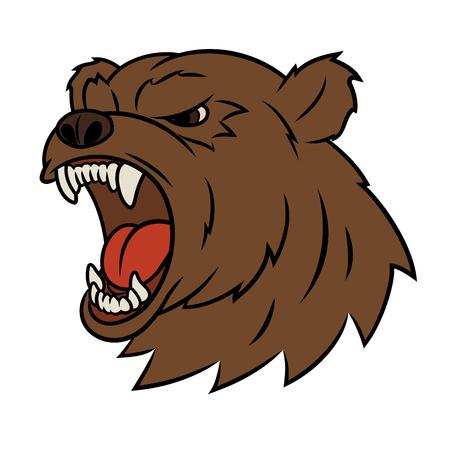 oso caricatura: Ilustración de la cabeza del oso enojado. Fondo blanco. Vector